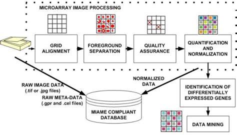 microarray workflow microarray data analysis isda