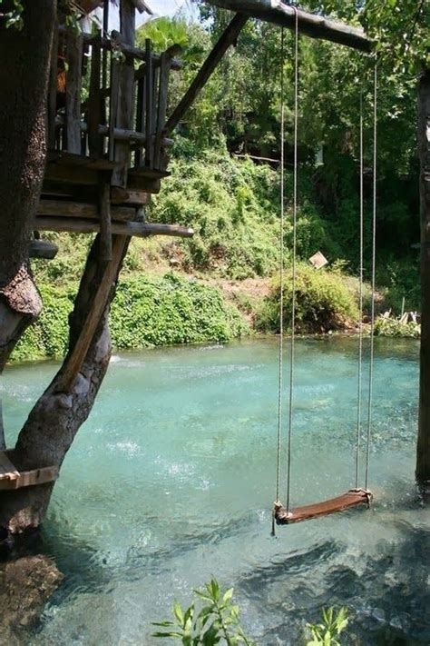 pond swing 25 best ideas about natural backyard pools on pinterest