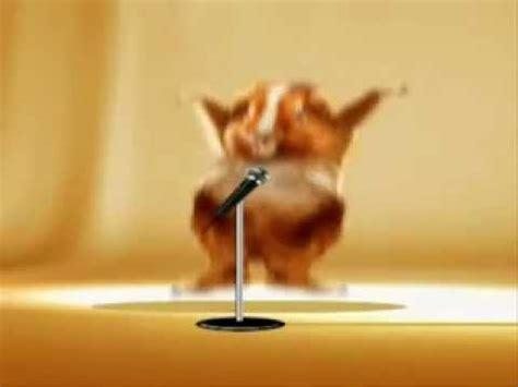 youtube music hamster dance dance hamster the hamsterdance song youtube