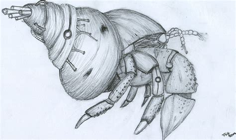 biomech hermit crab by d r a y a s h a on deviantart