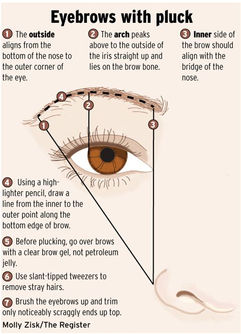12 Tips On How To Pluck Your Eyebrows by Brows Filling Out Runways Orange County Brows And