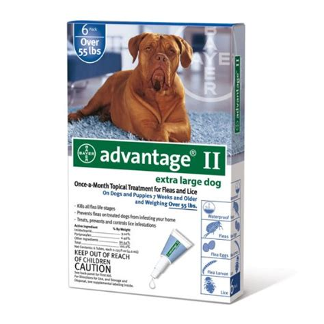 flea treatment for puppies 7 weeks your complete flea treatment guide