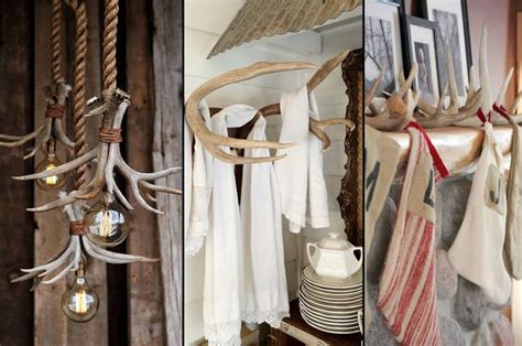 antlers decor  ways   shed antlers  home decorating