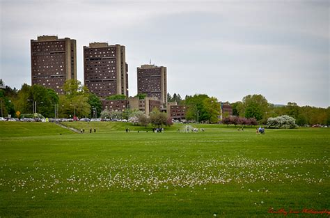 Umass Amherst Finder Photo