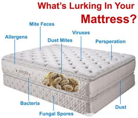 Lifespan Of Mattress by Mattress Cleaning And Sanitation Mattress Cleaning Ottawa