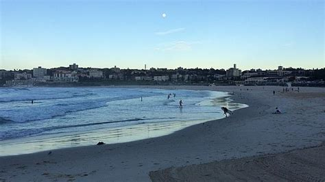 Modern Family Sweepstakes - modern family worth 16million to bondi will put famous beach back on us tourism map