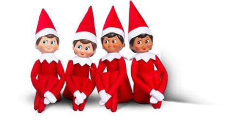 liverpools  elf   shelf pictures