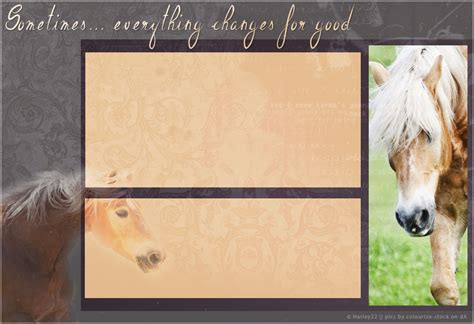 layout design howrse howrse layout haflinger by crystalcleargfx on deviantart