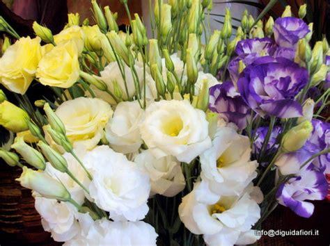 fiori di stagione agosto i fiori estivi per matrimoni giugno luglio agosto