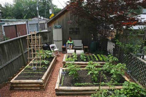 backyard agriculture the backyard urban farm companys pop up garden shop and greenhouse