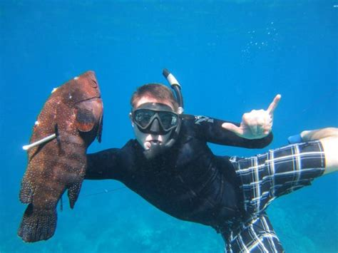 Bed And Breakfast Hilo Maui Spearfishing Academy Lahaina Hi Top Tips Before