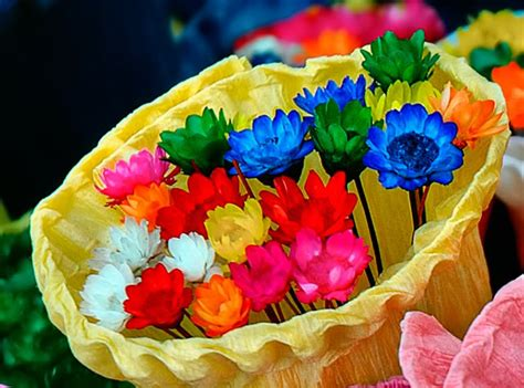 flower color meaning of the color of flowers representative meaning of