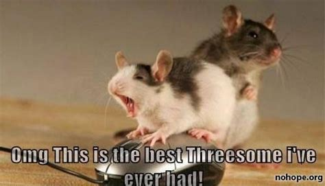 Threesome Memes - mouse threesome www slapcaption com mouse threesome