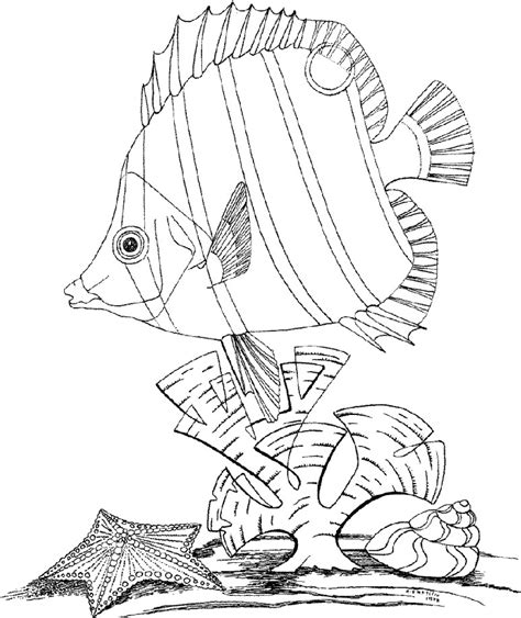 printable coloring pages underwater free coloring pages of underwater pictures