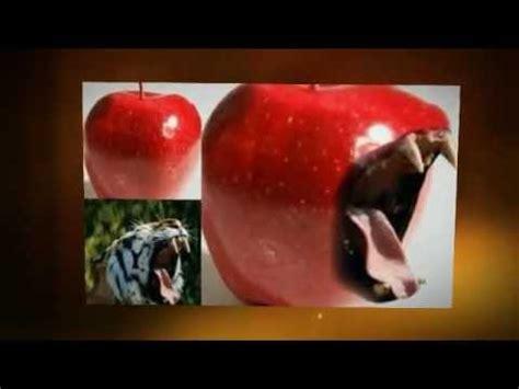 best photoshop tutorials for beginners best free adobe photoshop tutorials for beginners