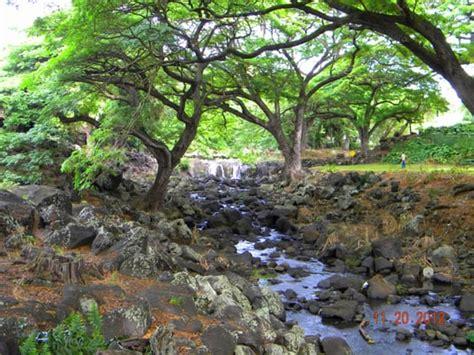 Liliuokalani Botanical Gardens Liliuokalani Botanical Garden Botanical Gardens Honolulu Hi Yelp