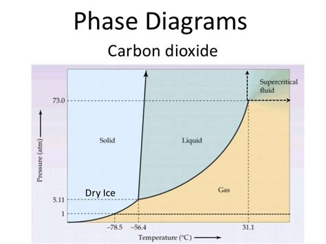 consider this phase diagram for carbon dioxide phase diagram notes