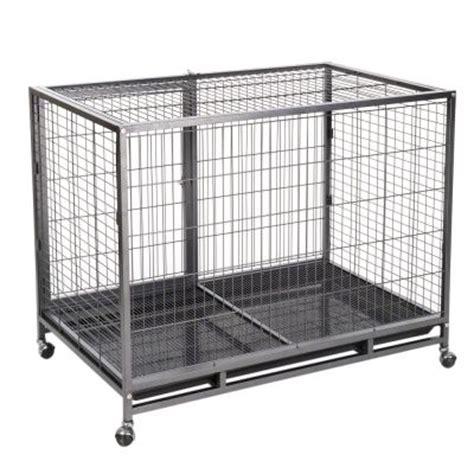 gabbia per cani da interno gabbia per cani tabby l zooplus