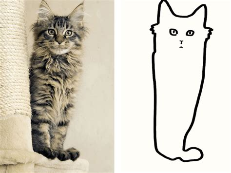 Cat Drawing minimal cat is a subreddit where their