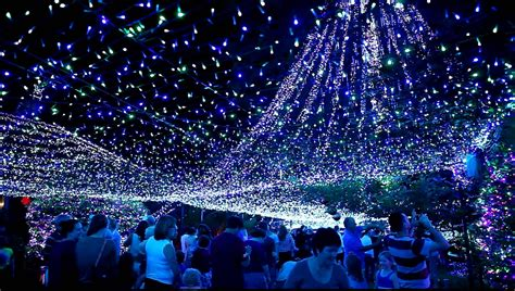christmas lights in canberra youtube