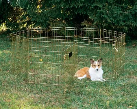 temporary housing for dogs temporary fence for dogs with dog outdoor decorations