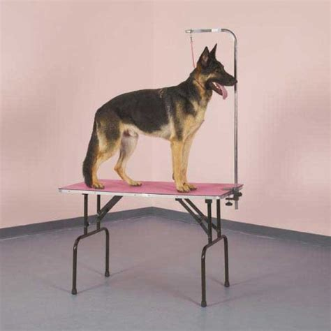 Grooming Table Mats by Top Performance Grooming Table Mat For Pets 24 By 48 Inch