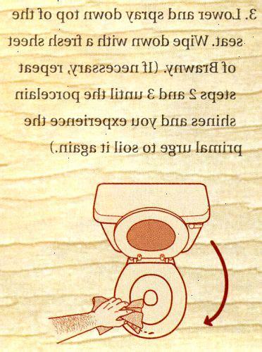Hoe Maak Je Een Wc Schoon hoe maak je een toilet schoon te maken wki