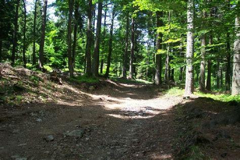 landshuter haus oberbreitenau freizeit rund um deggendorf wanderungen biker und