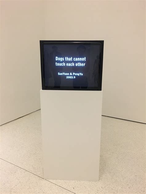 dogs that cannot touch each other guggenheim s controversial china exhibition revels at the intersection of and