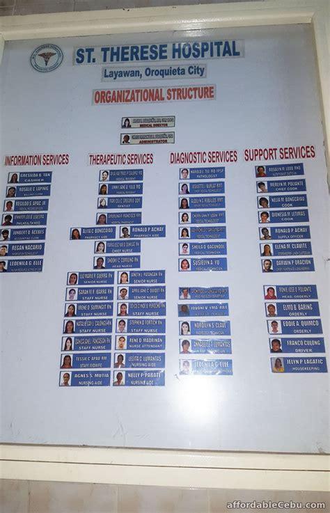 hospital organizational chart hospital organizational chart sle business 30434