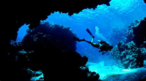 dive fiji diver s taste of fiji scuba dive package