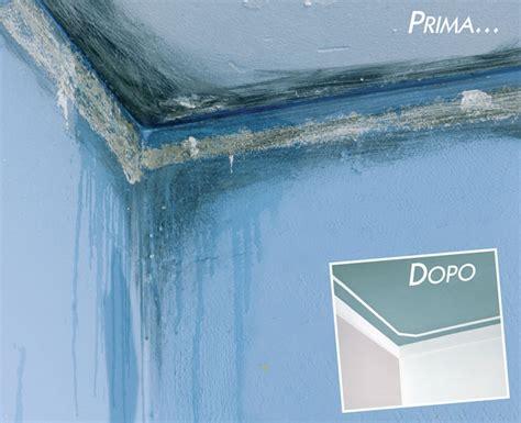 eliminare la muffa dai muri interni muffa sui muri candeggina confortevole soggiorno nella casa