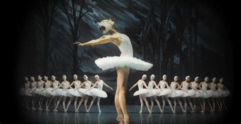 six reasons you need to 6 reasons you need to see the st petersburg ballet
