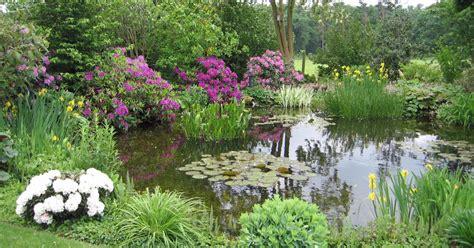 Garten Teich Pflanzen by Gartenteiche Bepflanzen Mein Sch 246 Ner Garten