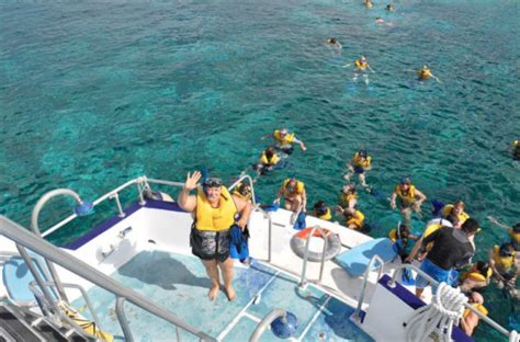 catamaran snorkeling belize learn from and snorkel with leading indies makers and