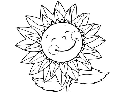 imagenes en blanco para colorear de flores paw patrol pumpkin stencil marshall colouring pages for