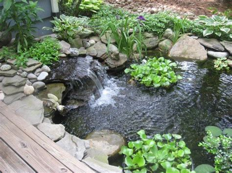 cascade jardin embellir jardin design de