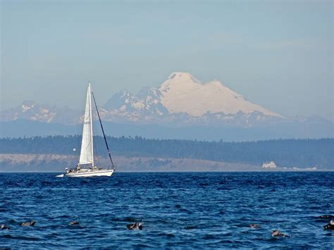 sailboat tours seattle 65 best images about cheryl washington vision tour on