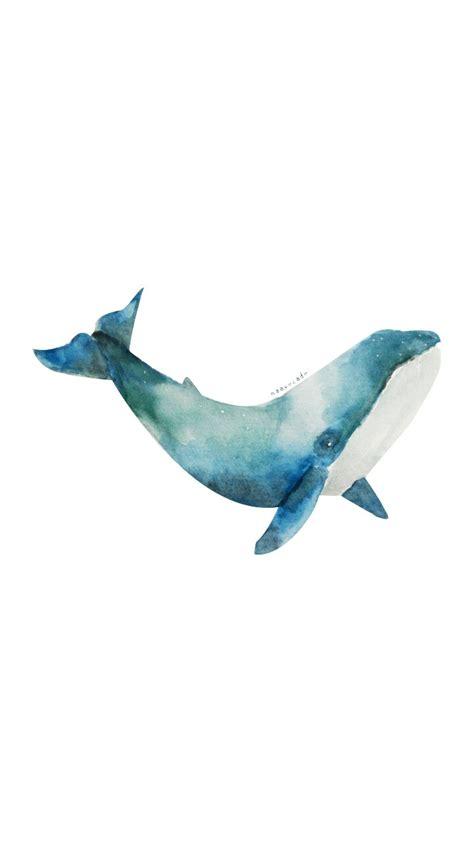 watercolor orca tutorial naavocado whale watercolor by me illustration