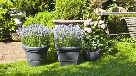 vasi da giardino vasi da giardino per un ambiente sempre chic dalani