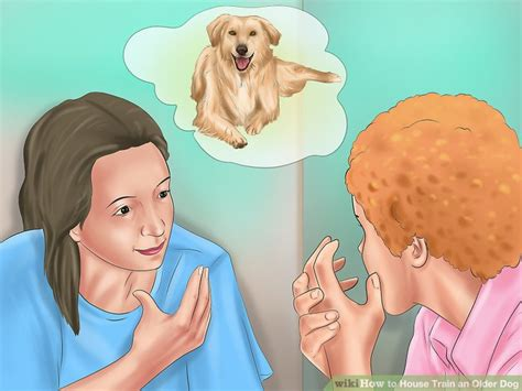 house train an older dog how to house train an older dog with pictures wikihow