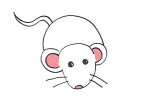 imagenes para dibujar a lapiz de animales faciles dibujo para aprender a dibujar paso a paso