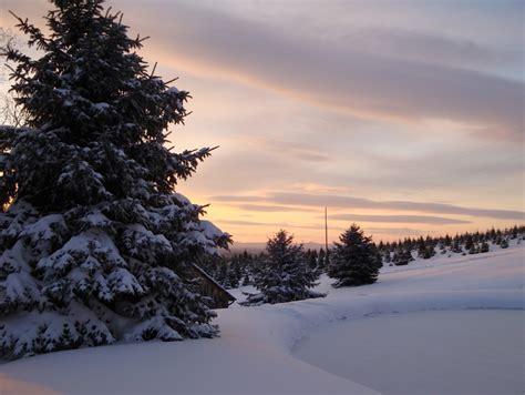 loudoun county farms va official website christmas