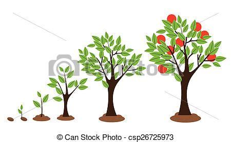 vita len federn crescimento 225 rvore 193 rvore isolado ilustra 231 227 o diagrama