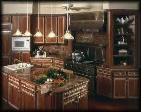 Winning Kitchen Designs Cool Ways To Organize Award Winning Kitchen Designs Award