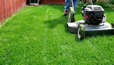 backyard cleaning services 44 ideas for for teenagers stay at home