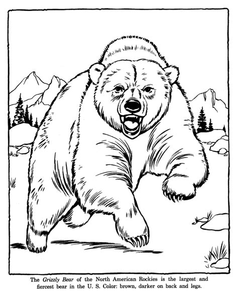 printable zoo animal coloring pages zoo coloring pages coloring kids