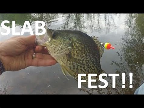 catching slab crappie  shore   minnows youtube