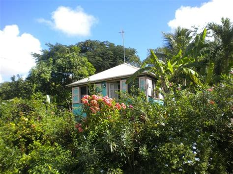 buy house in antigua colorful houses in antigua picture of st john s saint john parish tripadvisor
