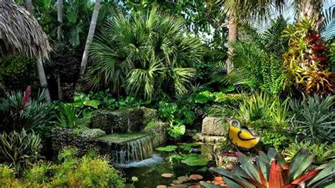 Very Small Bathroom Ideas 10 easy steps to make your dream tropical garden a reality